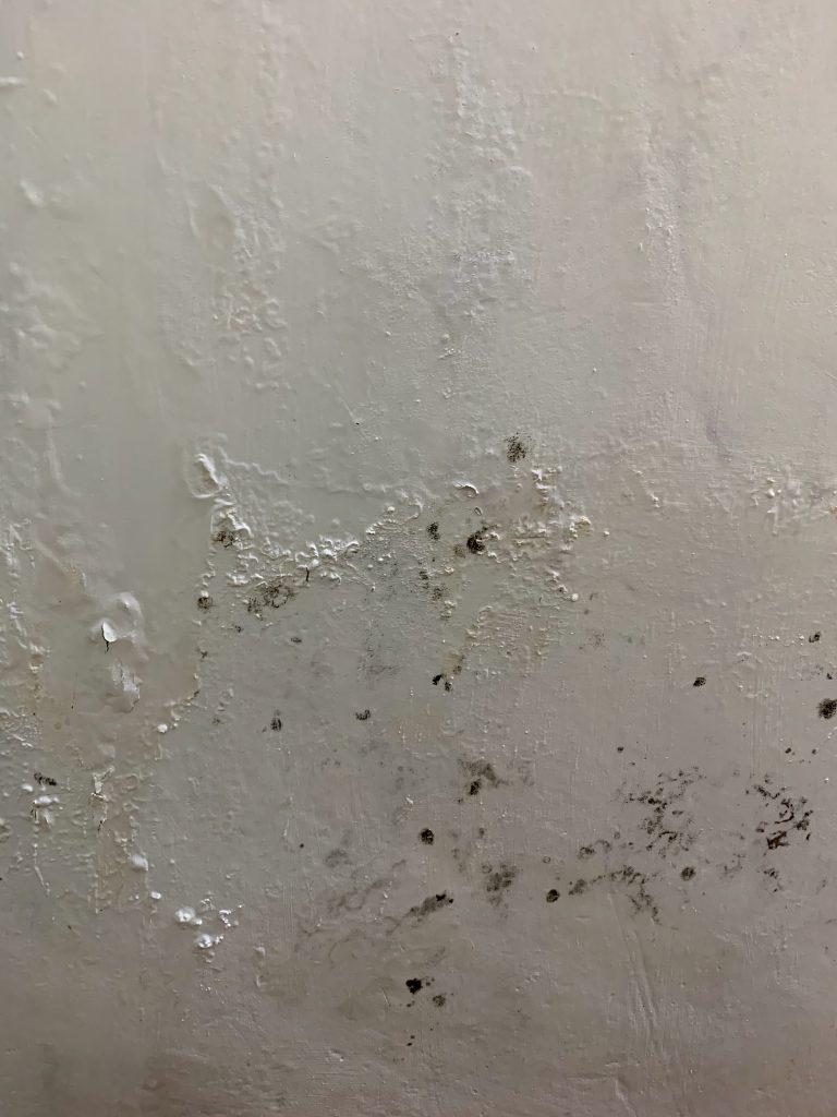 牆身滲水漏水,發霉發黑,甚至導致石屎剥落